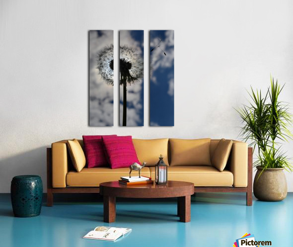 Dandelion Split Canvas print