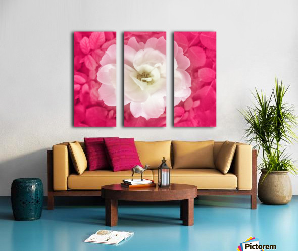 White Rose Top View Split Canvas print