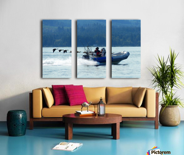 Fly By Split Canvas print
