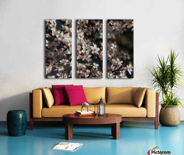 Lovely Blossoms Split Canvas print