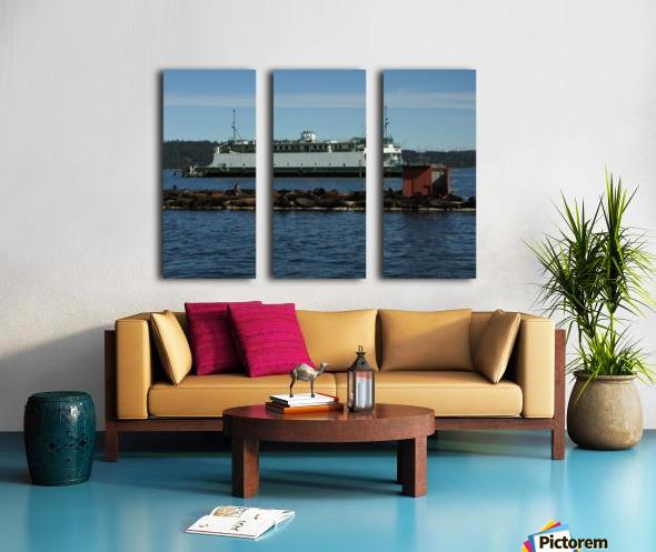 Baynes Sound Split Canvas print