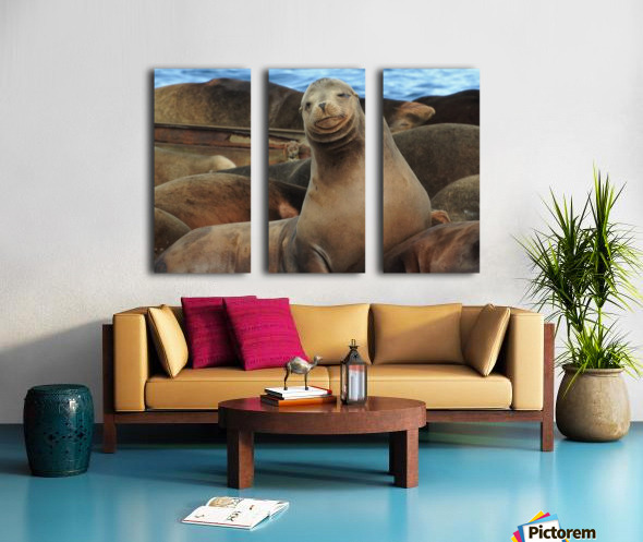 Sweet Face Split Canvas print
