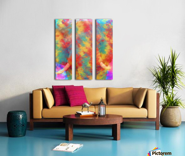 Abstract Elephant Split Canvas print
