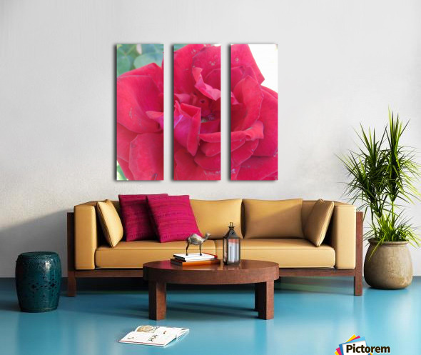 Life Split Canvas print