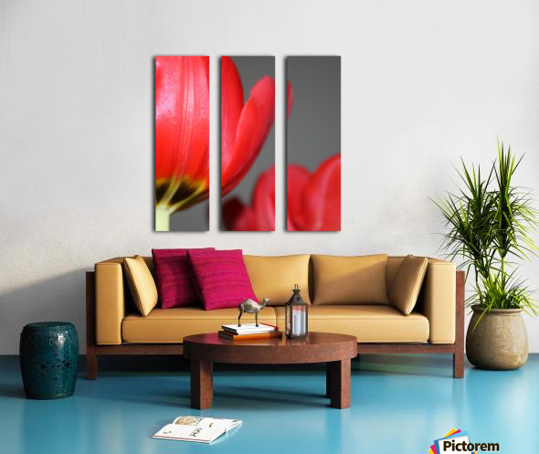 Tulips Split Canvas print