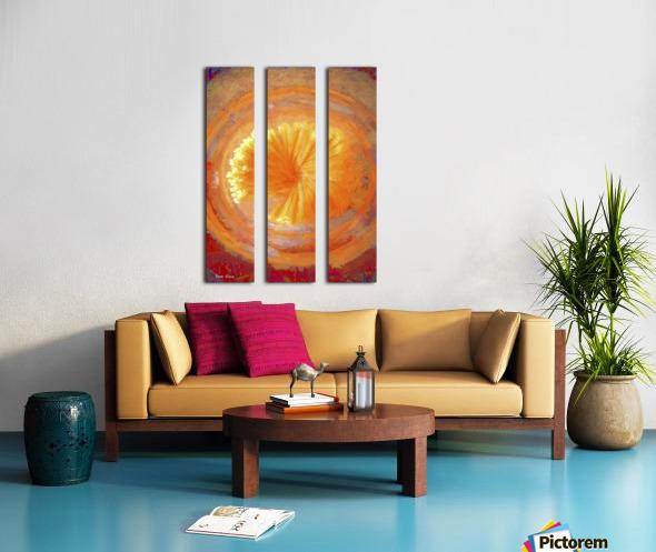 Pastar_140902_13094 HXSYV Split Canvas print