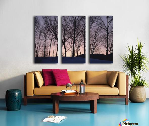 landscape_2_1031 Split Canvas print
