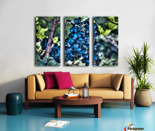 Bunches of Grapes Split Canvas print