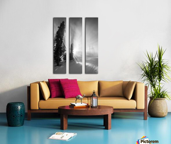 Frozen mist Split Canvas print