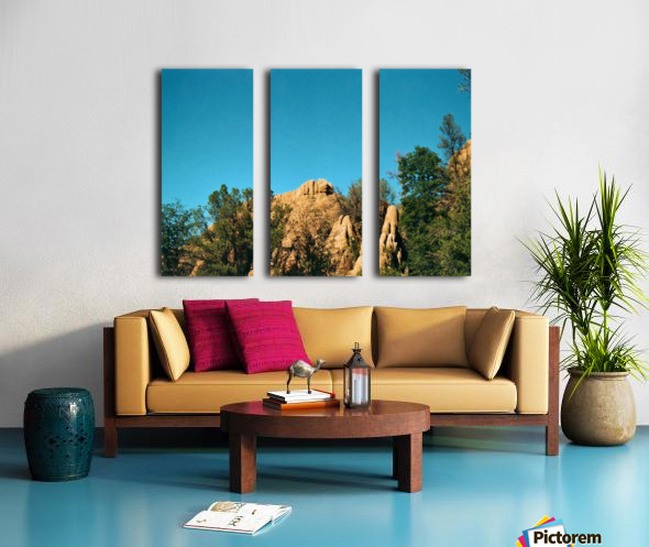 A Rock Hill Split Canvas print