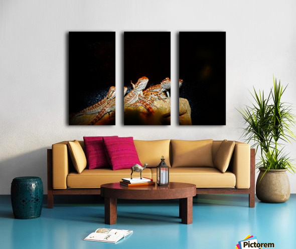 Reptile movie Stars Split Canvas print