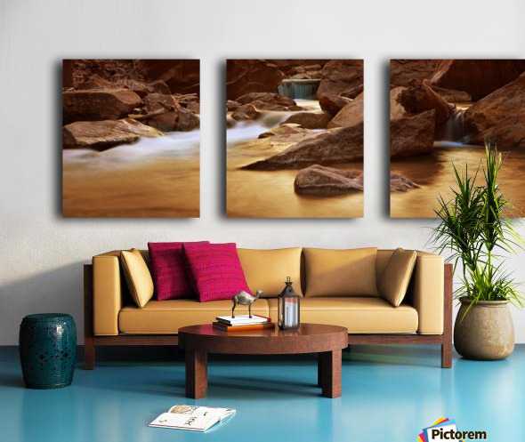 Zion Park River Split Canvas print