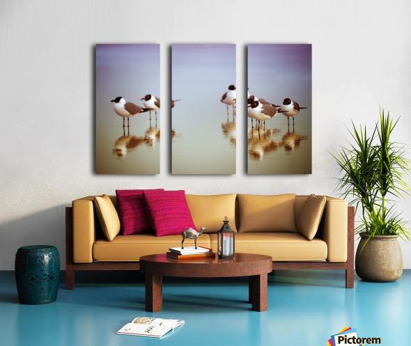Birds on the Beach Split Canvas print