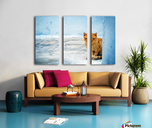 Cat Split Canvas print