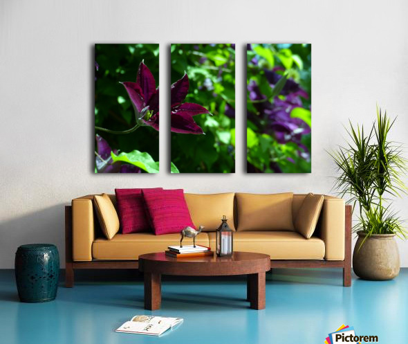 Divine Vine Split Canvas print