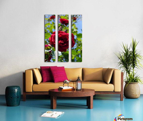 Red, White and Blue Split Canvas print