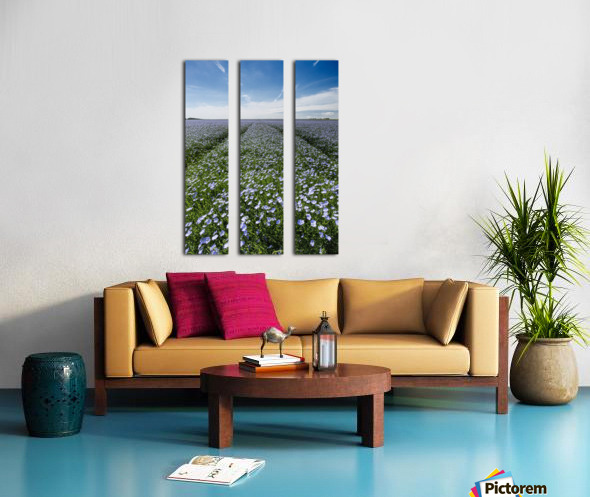 Linseed Oil Contrails Split Canvas print