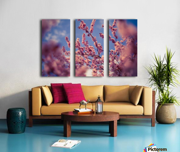 Spring cherry flowers Split Canvas print