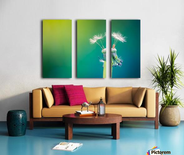 Dandelion Split Canvas print