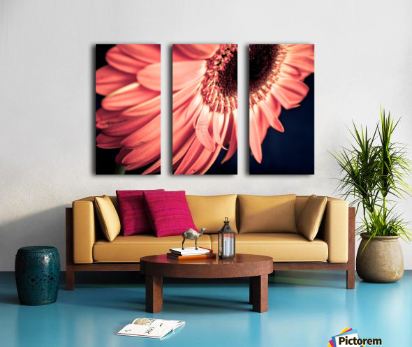 Gerbera flower background Split Canvas print