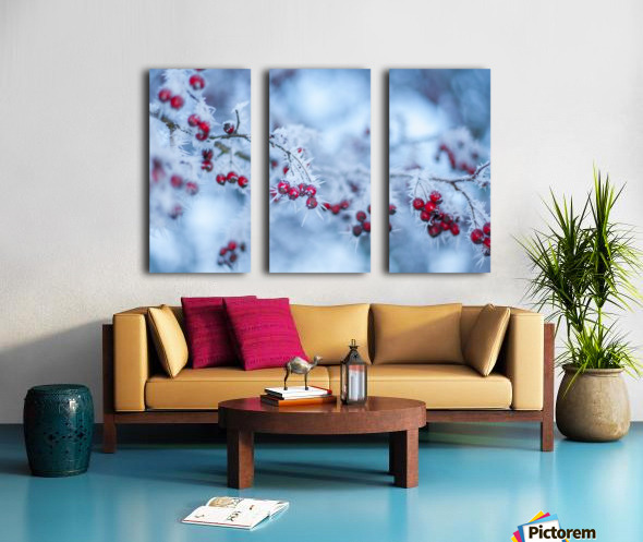 Winter flowers Split Canvas print