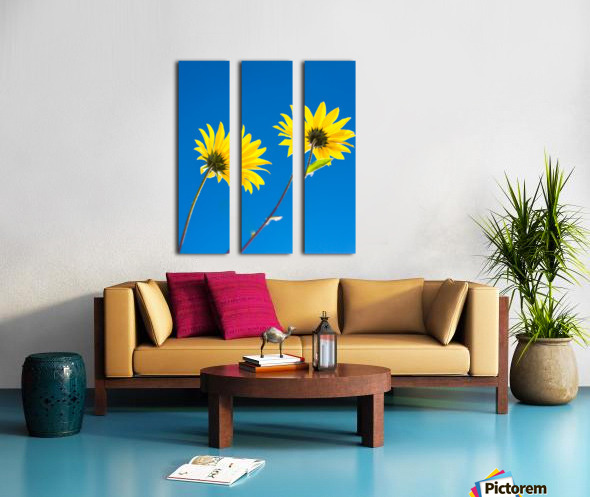 Yellow flowers and blue sky Split Canvas print