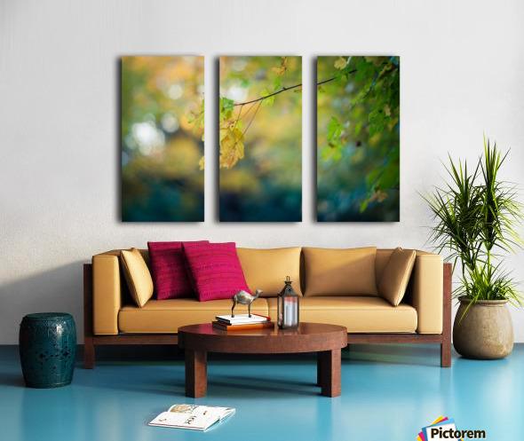 Beautiful autumn background Split Canvas print