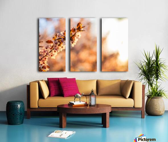 Beautiful Spring cherry flowers Split Canvas print