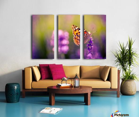 Beautiful Sunset lavender flowers Split Canvas print