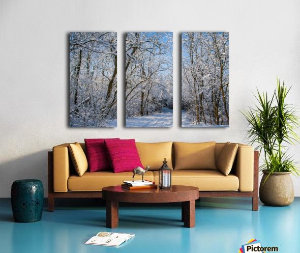 Forest covered with snow Split Canvas print