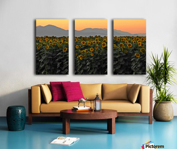 Standing Room Only Split Canvas print