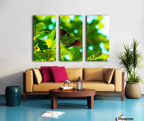Resting on A Maple Leaf Split Canvas print