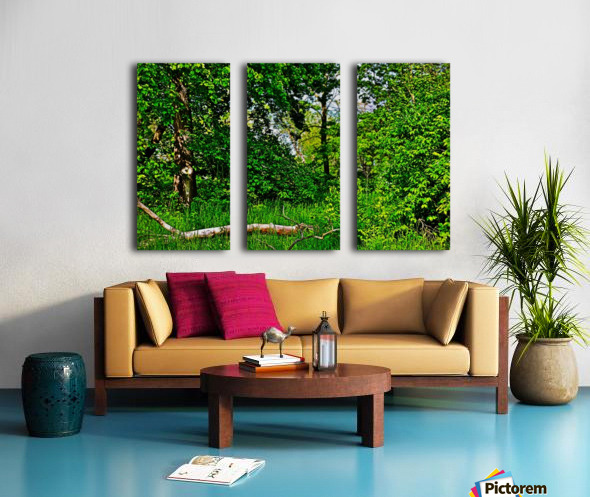 Life in the Shadows of the Trees Split Canvas print