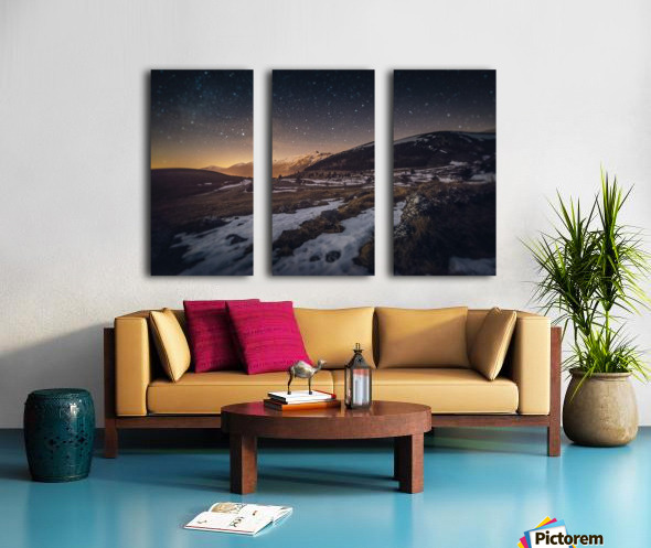 Ellipse Split Canvas print