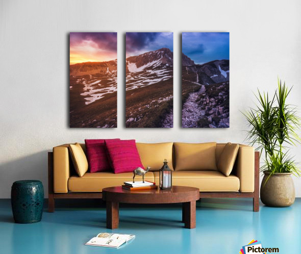 Karoo Split Canvas print