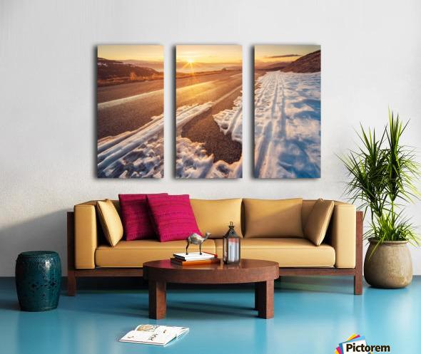 Global Split Canvas print