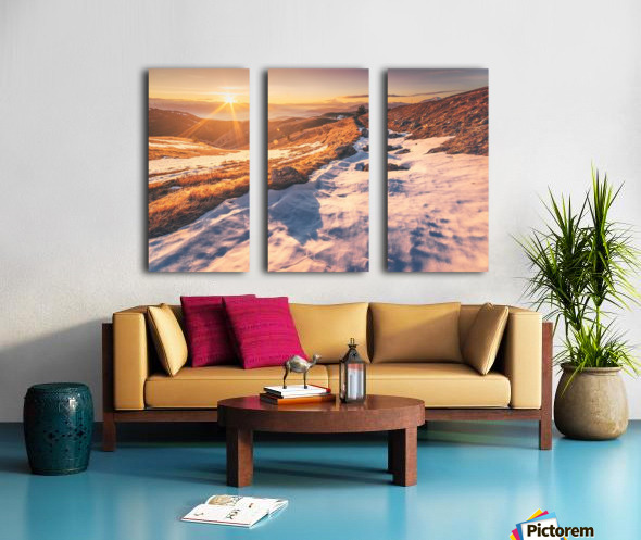 Panama Split Canvas print