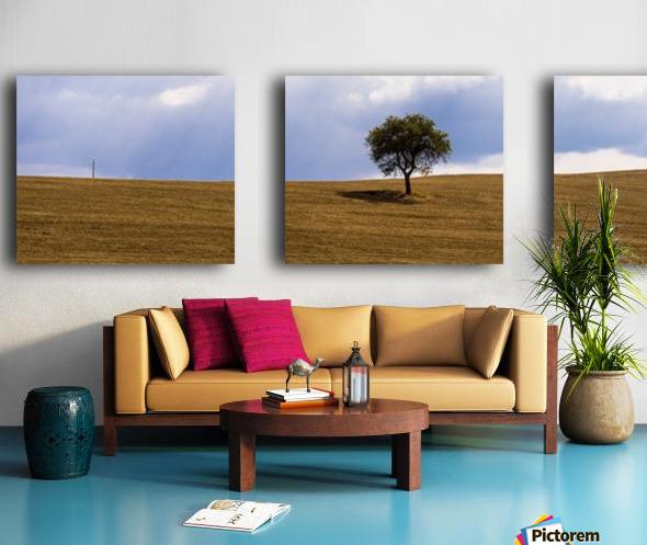 Tuscany Tree Split Canvas print