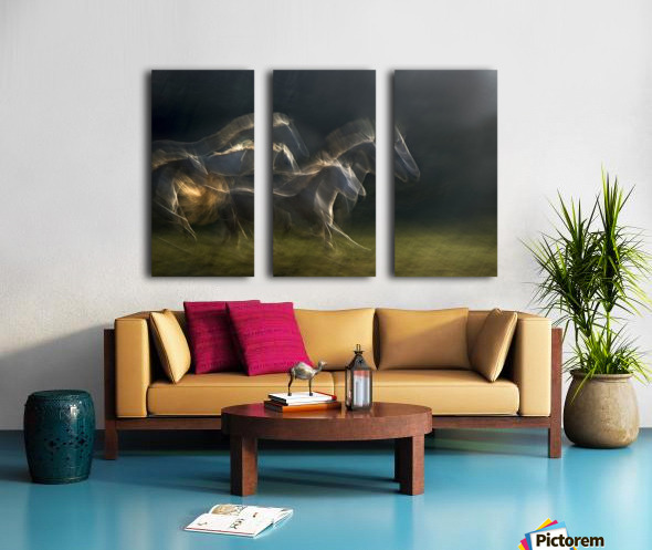 echoing in motion Split Canvas print