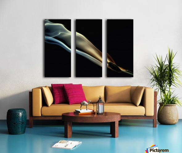 Silk Split Canvas print