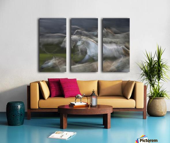 Stampedo Split Canvas print