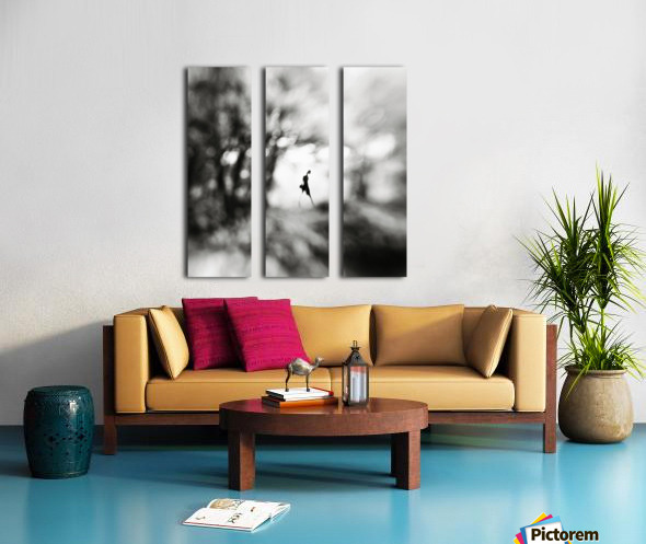 Equinox Split Canvas print