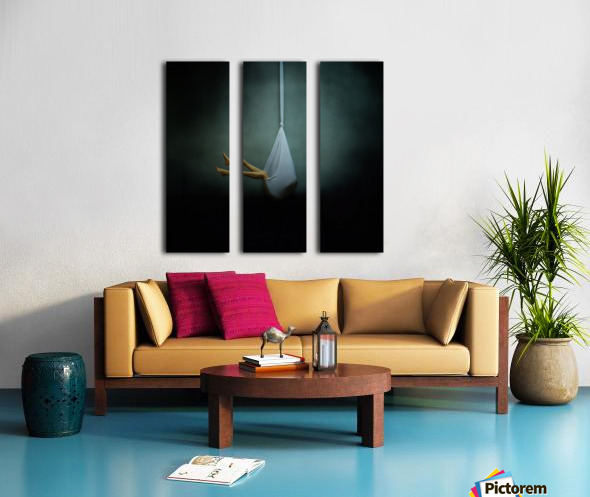 *** Split Canvas print