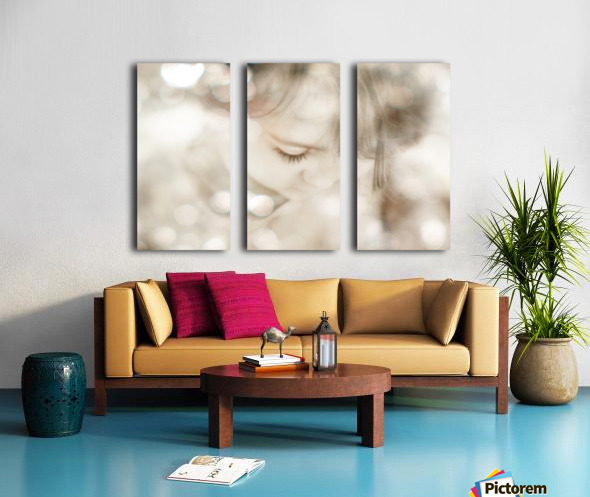 Hi Lite Split Canvas print