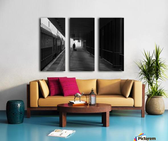 passenger Split Canvas print