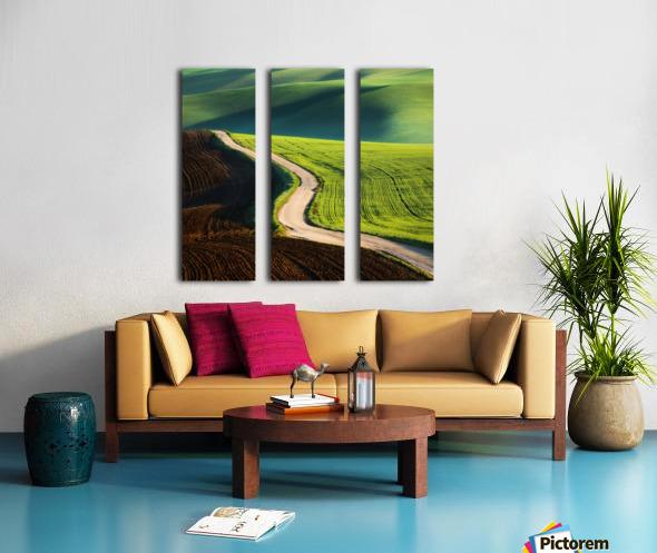 Road Split Canvas print