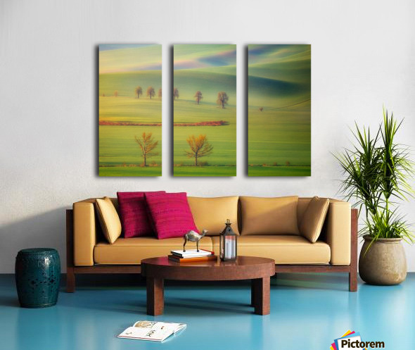 Fields Split Canvas print