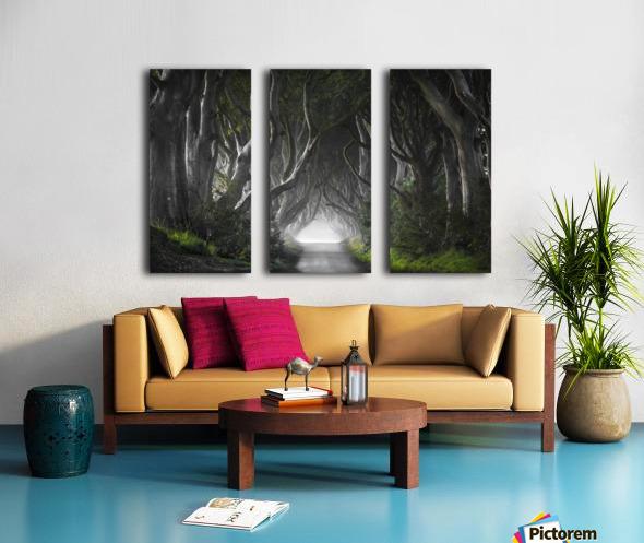 DARK HEDGES Split Canvas print