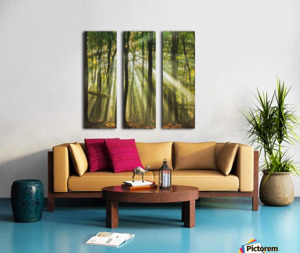 Sunny start to the day ........ Split Canvas print