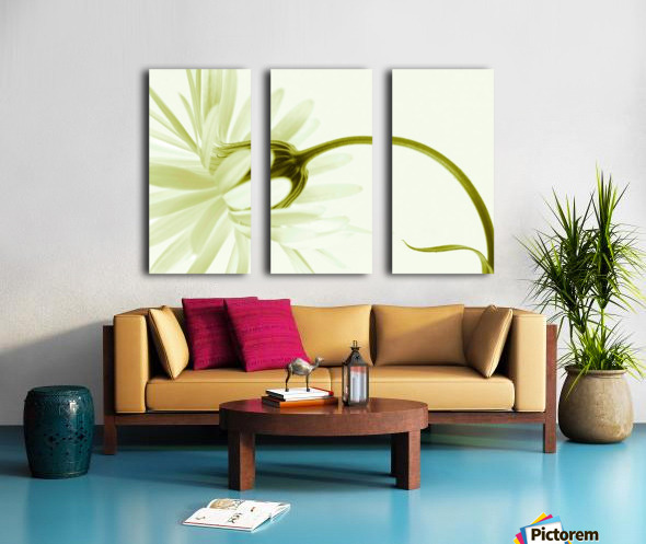 Artless Split Canvas print
